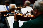 Waltz Medley (instr. Strings)
