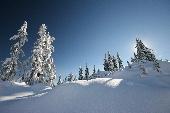 Winterwonderland (instr. Klarinette)