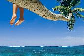 Barfuß unter Palmen