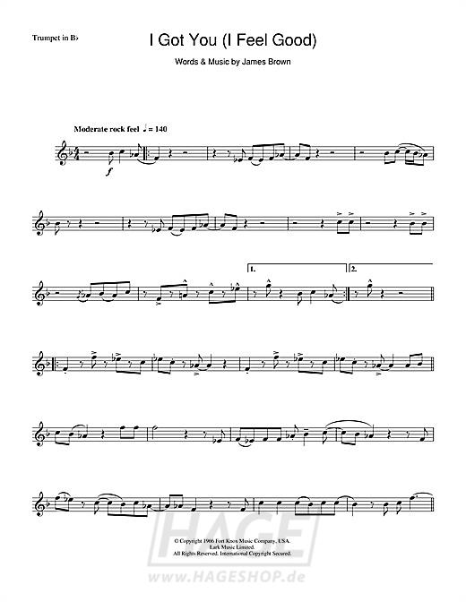 I Got You (I Feel Good) - James Brown - Noten Druckvorschau