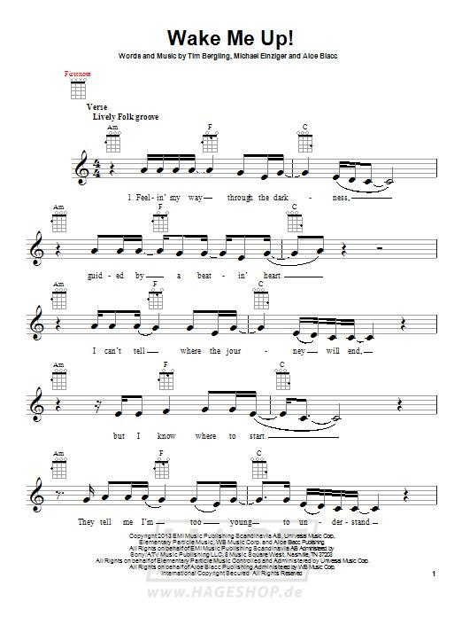 Wake Me Up - Avicii - Noten Druckvorschau